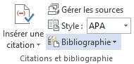 creer-des-bibliographies-tables-de-références-word-2013-digicomp-6